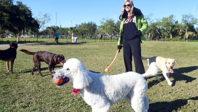 Christine Walker, of Vero Beach, spent the cool morning of Jan. 4, 2018 at the dog park in Vero Beach. The early-morning low temperature dropped to the low- to mid-30s as a cold front moved over the Treasure Coast.