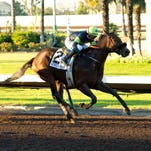 Agave Racing Stable's Street Fancy and jockey Mike Smith win the Grade I, $300,000 Starlet, Saturday, Dec. 12, 2015 at Los Alamitos Race Course.