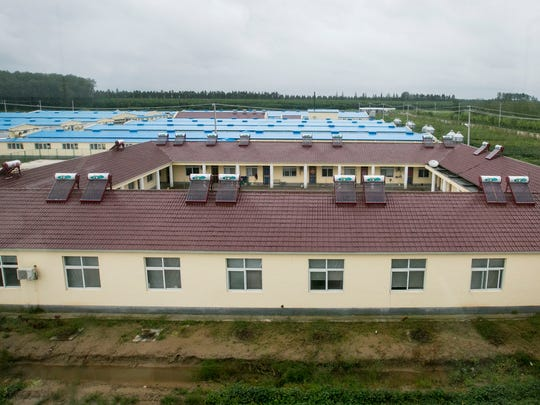 The 20 workers at Guang Ming breeder farm, a $6.2 million operation built in September 2013, live in a dormitory to prevent the spread of disease.