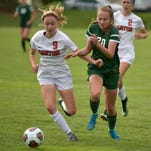 Stadtherr's two goals propels Novi by Canton in regional semifinal
