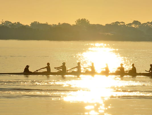 College rowers train in Sykes Creek.