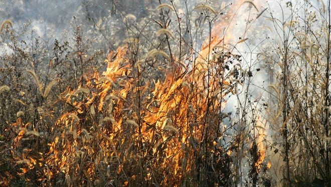 Prophetstown State Park has two controlled burns of prairie grasses. The Friday fires sent a plume of smoke rising into the sky and created a smoke odor in much of Lafayette.