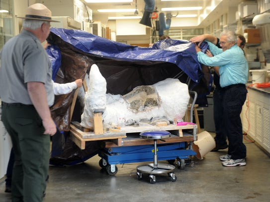 A mammoth skull excavated from Santa Rosa Island is