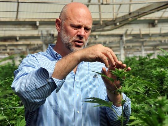 Gavin Kogan talks about parts of the marijuana plant