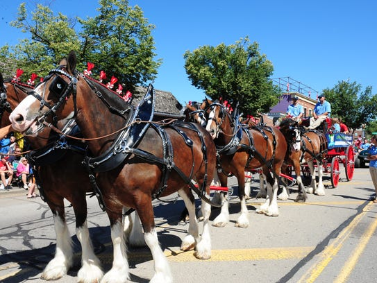 Huron-Clinton Metroparks displayed the beautiful Clydesdale