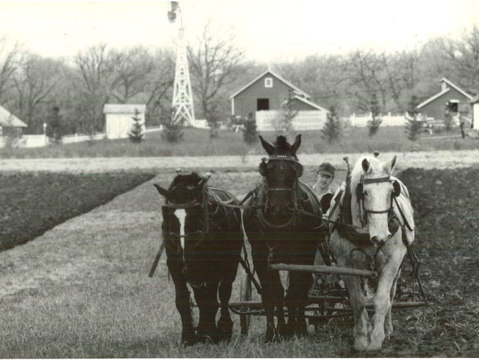 Ron Westphal plows at Living History Farms on April