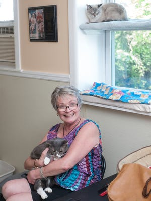 Save the Animals volunteer Joan Bullock holds Angel. Save the Animals Foundation animal rescue is helping to place cats left behind when their owner was struck by a car and killed in April.