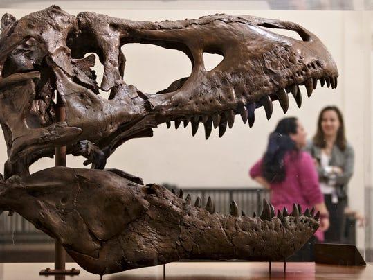 Smithsonian Tyrannosaurus Rex