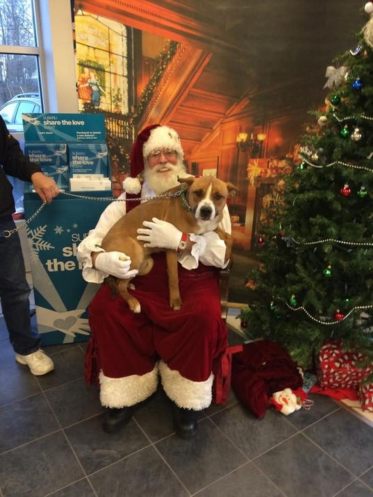 Santa To Pose With Pets Kids At Matthews Subaru
