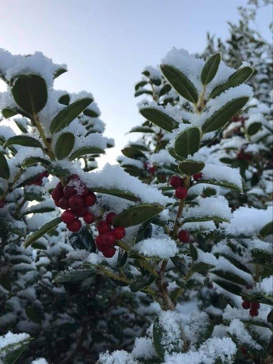 Panhandle-snow-3.jpg