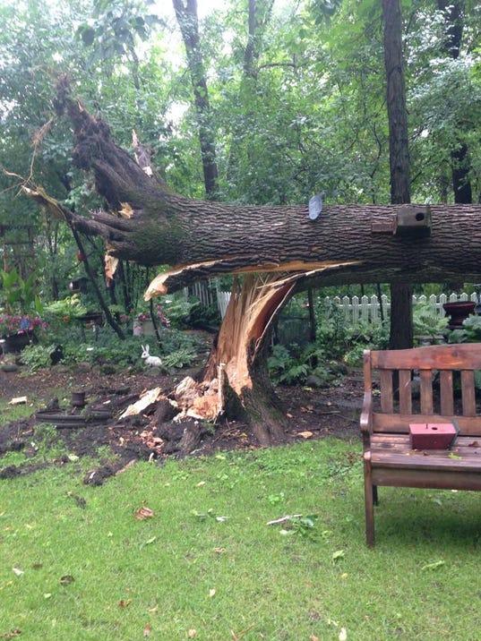 trees down waupun (1).jpg