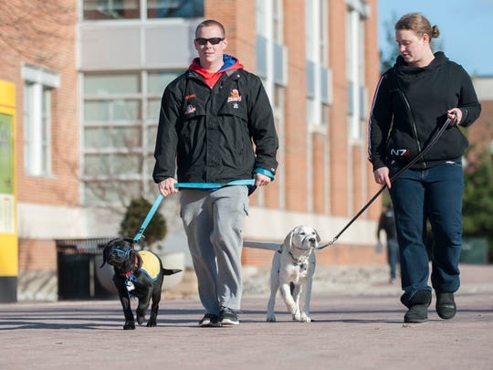 Rowan junior Jim Witkoski of Marlton, left, walks a 4-month-old lab named Augie as Rowan senior Nicole Puzio of Medford walks a 4½-month-old mix named Treat on the campus of Rowan University in Glassboro.  The two Rowan students are puppy raisers for Canine Companions for Independence.  02.26.16