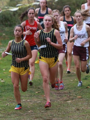 Watkins Memorial's Chloe Cortes and Hastings Marek compete in the Division I district meet this past Saturday. The Warriors won the Section 3 race.