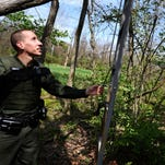 Photos: Hunters must remove tree stands or face fine
