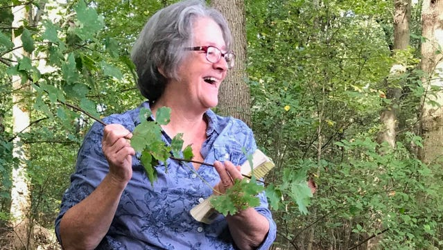 Volunteer hike leader Pat Coleman will explain how to identify plants and trees using a guidebook during a hike April 21 in the Sourland Mountains.