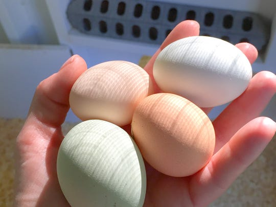 The production of eggs in both the state and the nation continues to increase.