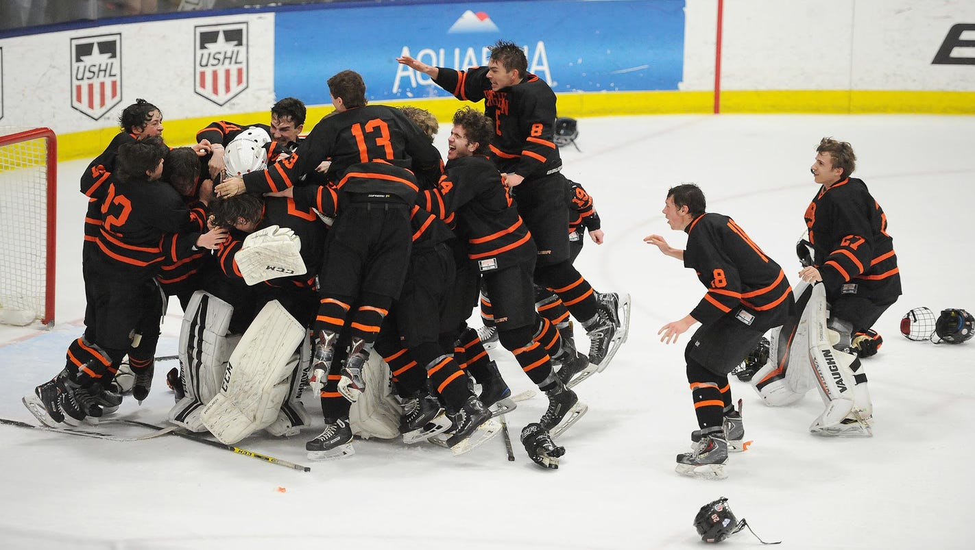 D1 hockey final: Brighton 5, Saginaw Heritage 2