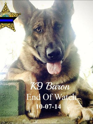 K-9 Baron with the St. Johns County Sheriff's Office died in the line of duty Tuesday.