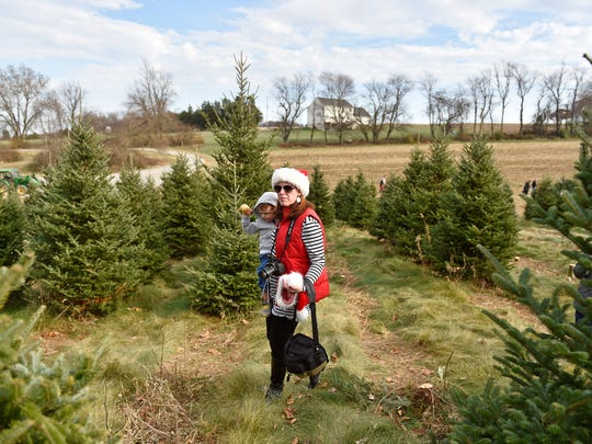 Shanna Terroso of Springettsbury Township holds son Luke, 2, as they search for a Christmas tree Saturday, Nov. 25, 2017, at Family Tree Farm in North Hopewell Township. The farm, owned by Rick and Karen Doyle, has been in Karen Doyle's family since 1810 and has sold Christmas trees since 1995.