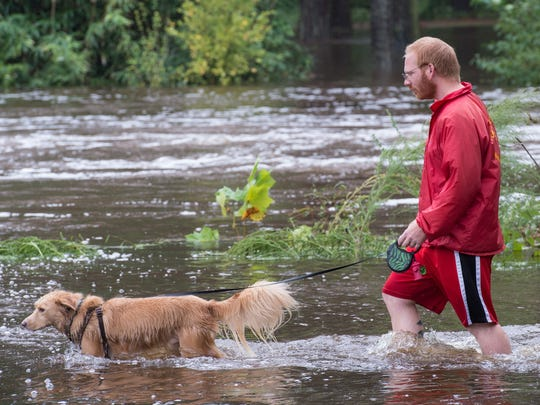 A man walks his dog through floodwater at the North