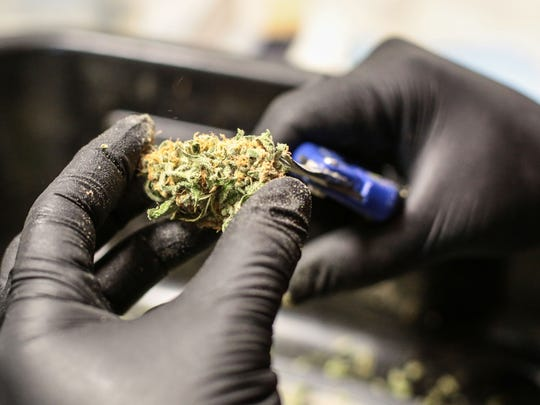 A worker processes a marijuana flower at the MedMen