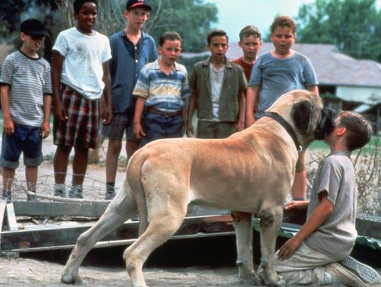 The Sandlot Dog 'the sandlot'