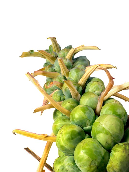 CO Sprouts 122614 A Feat.jpg