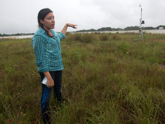 Escambia County Green Roof