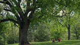 City staff have proposed a $12 million project that would redevelop the historic park's core area.