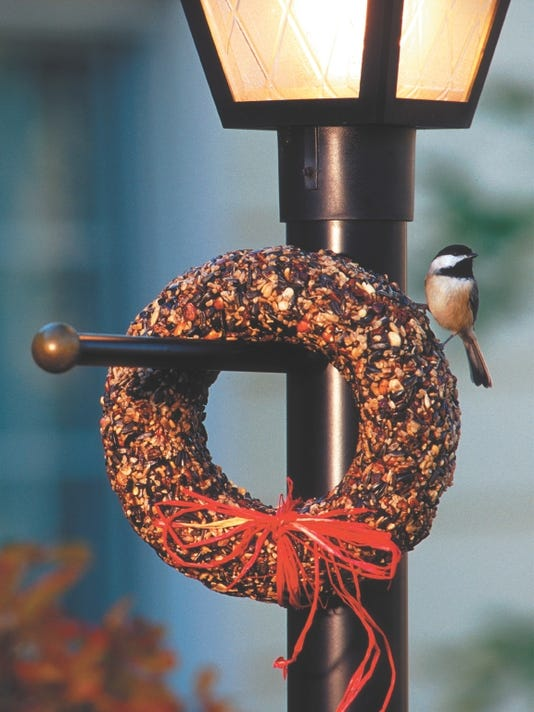 635837882354510530-chickadee-on-seed-wreath.jpg