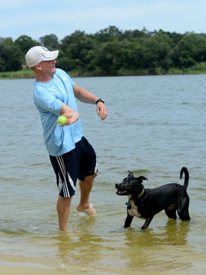 Ryan Goreman throws a ball for his dog Jammer on Monday at Bayview Park Dog Beach. Goreman and many other dog owners have been anxiously awaiting the reopening of the park after it was damaged in the April flood.