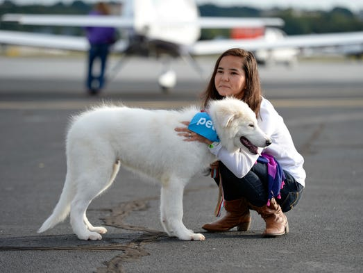 The Pilots & Paws Greenville Rescue Airlift during which 174 pilots and co-pilots will be flying 72 private airplanes to transport nearly 400 animals to receiving shelters and new homes throughout the U.S. was held  Saturday, Sept. 27, 2014 at the downtown airport.