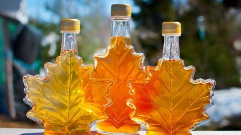 Maple Fall Fest will be held this weekend at Wildwood Park & Zoo.