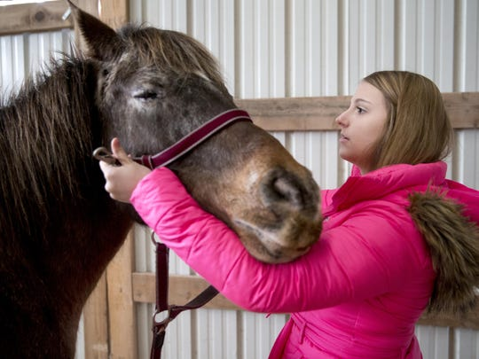 Rachel Karll, 20, puts a halter on Cisco, one of the Chaps Academy, Inc., horses, while demonstrating a few of the activities a client in Chaps' suicide prevention and intervention program would go through Tuesday, Jan. 26, 2016, in Shiocton, Wis. Karll spent two years in the outpatient and day treatment therapies at Chaps and has been discharged for another two years.