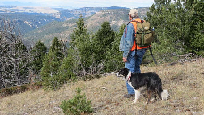 Dave Wilsey hikes in the Deep Creek Roadless Area in the North Fork drainage looking toward the Smith River Canyon. In a draft plan for the Helena-Lewis and Clark National Forest, 14,544 acres are recommended as wilderness in the Deep Creek area of the Little Belt Mountains.