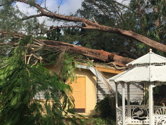 Hurricane Irma caused a tree to fall on a house on