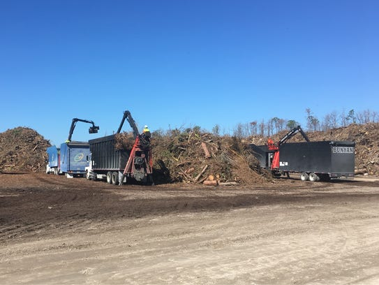 A dump truck adds to a pile of horticultural debris