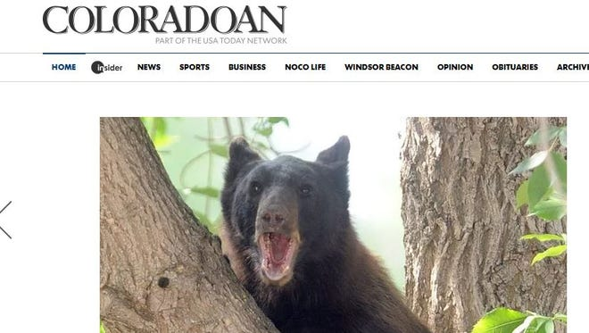 Coloradoan.com received a new look Wednesday morning.