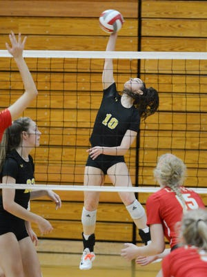 East Troy's Brianna Scuric hits from the back row against DSHA last season.