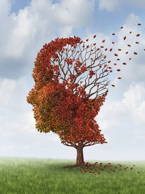 Preliminary research suggests that Celexa may temporarily lower levels of a protein that clogs the brains of people with Alzheimer's disease.