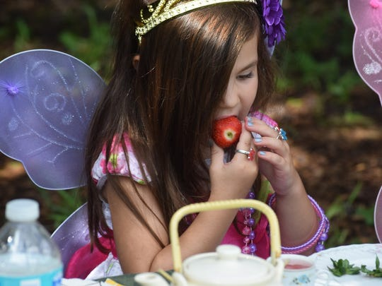 A Fairy Tea Party is held twice a year in the Butterfly Garden at Rotary Park.