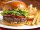 Aioli Gourmet Burger | Serves: Burgers. Menu sample:
