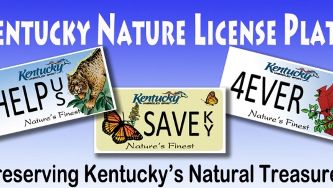 Renewing your Kentucky license plate? Now you can online