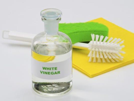 APC f FF frugal vinegar 0628