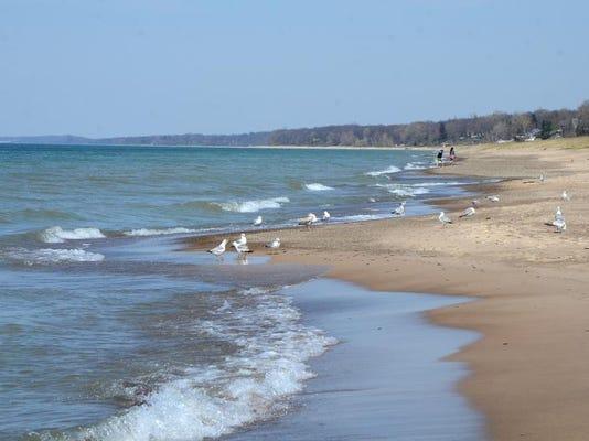 New Buffalo beach 1.jpg