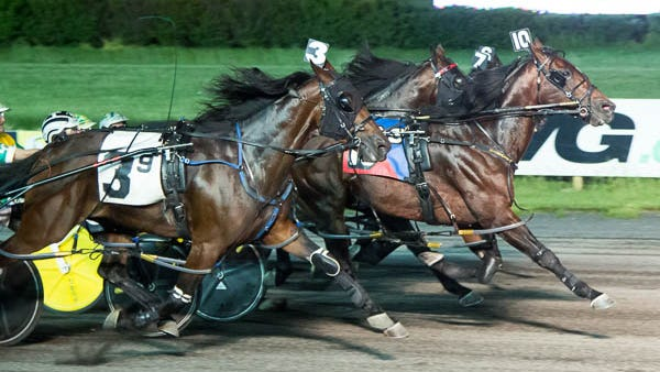Highalator (No. 10) and driver Ricky Still pull off an upset in the Saturday night feature at the Meadowlands Racetrack.