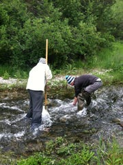 Collecting macroinvertebrate samples, small aquatic organisms that fish feed on, is an important method for determining stream health.