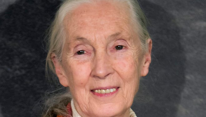 Jane Goodall in Paris last April.