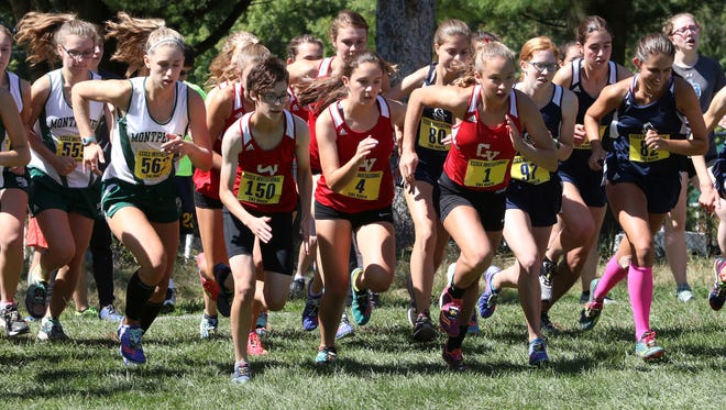 Runners compete at the Essex Invitational on Saturday.