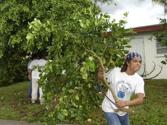 In this 2002 photo, Maria Laureano hauls away the branch